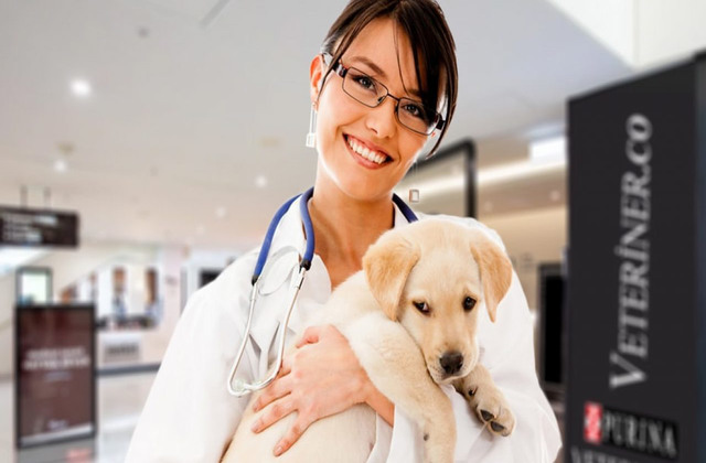 veteriner2_640x420